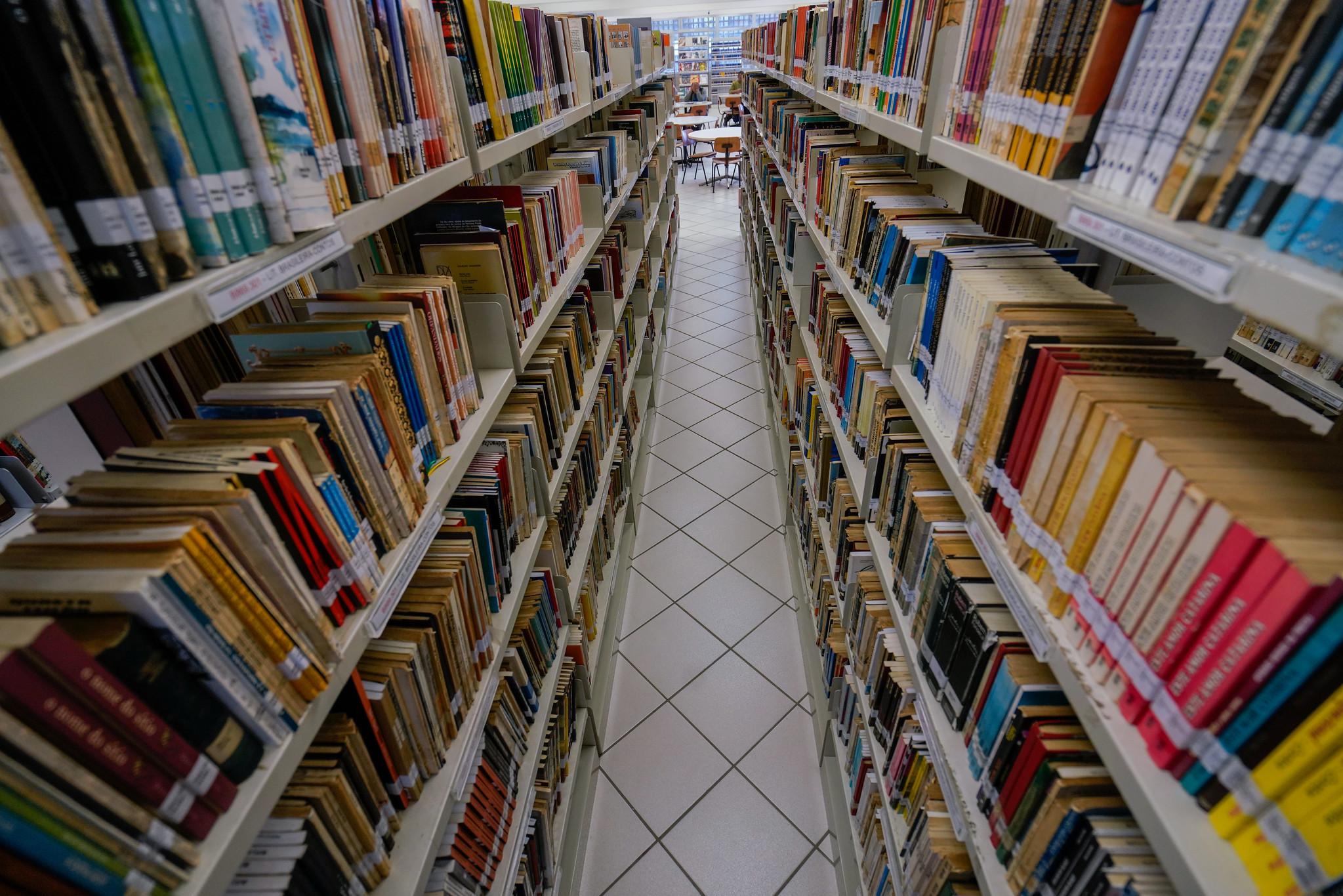 Histórias ficcionais são utilizadas na alfabetização de crianças nos anos iniciais do Ensino Fundamental em novo método de letramento literário